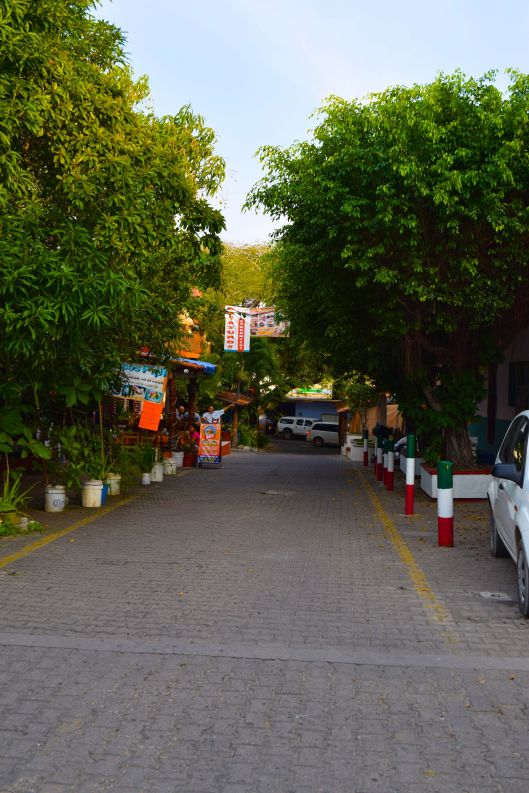 Many side streets with lots of trees and locals