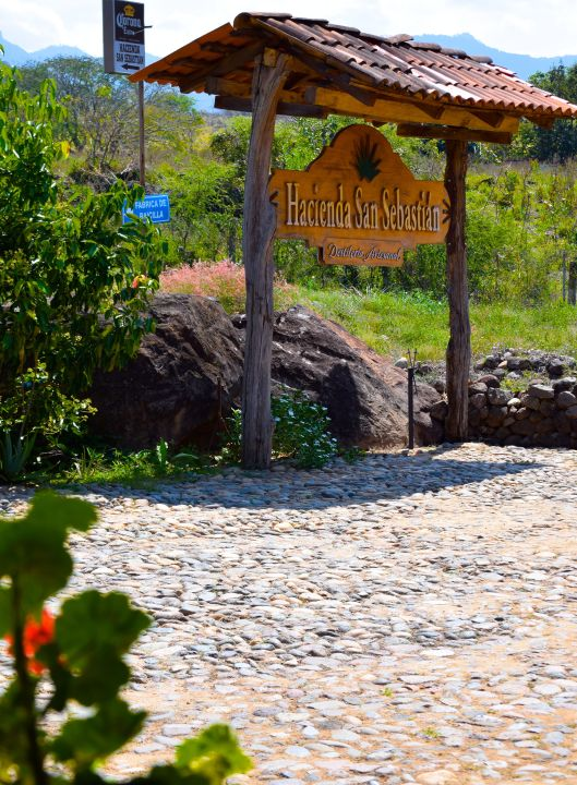 Small tequila distillery on the way to San Sabastian