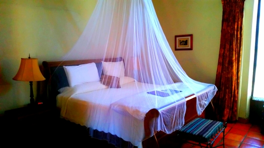 Our room at the Todos Santos Inn.  No we didn't sleep under the net.