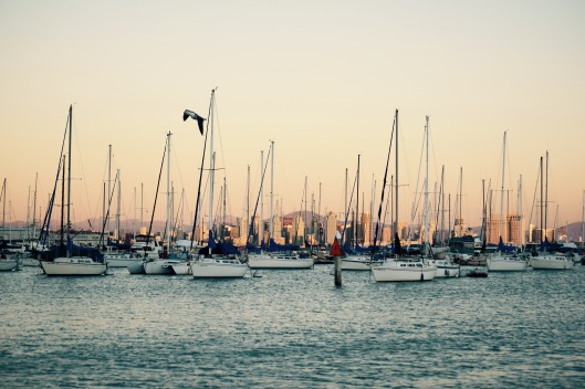 We have enjoyed our slip in America's Cup Harbor with this fabulous view of downtown San Diego.