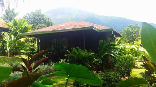 This was our cabin with a view of Arenal Volcano from our back porch.