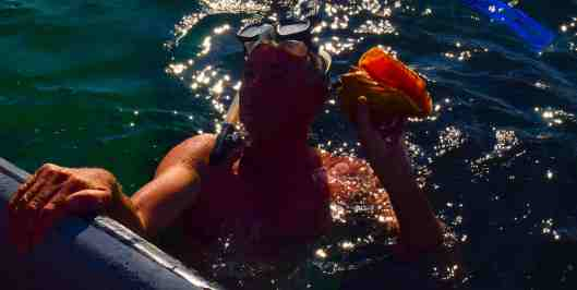 We stopped to swim and snorkel off the panga and Dave found a conch.  Tasty to eat but we threw it back.